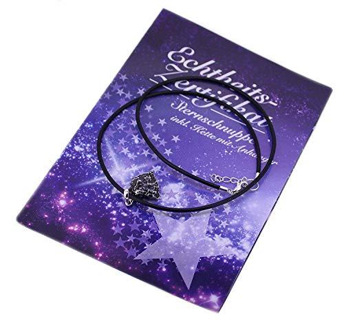 budawi® - Geschenkset Sternschnuppe Meteorit Anhänger mit Kette und Echtheits-Zertifikat in Geschenkbox
