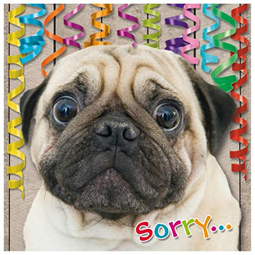 "Susy Card 40010670 Geburtstagskarte/ Nachträglich \""Trauriger Hund\"", Maße: 15 x 0, 2 cm"