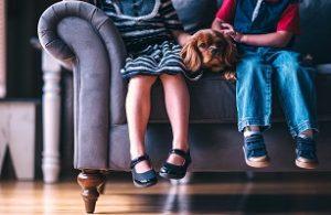 sofa richtig reinigen