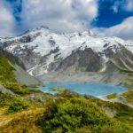 Griechischer Bergtee - einfach mal Gesundheit verschenken